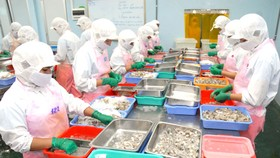 Chế biến tôm có nhiều thuận lợi để tăng sản lượng xuất khẩu  Ảnh: CAO THĂNG