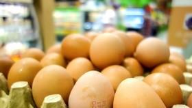"""Indonesia tiêu hủy 10 triệu quả trứng để """"cứu"""" giá thịt gà"""