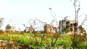 Thuế sử dụng đất cần mức lũy tiến cao để ngăn ngừa có đất nhưng không đưa vào sử dụng, bỏ hoang hóa. Ảnh: LONG THANH