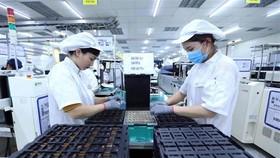 Dây chuyền sản xuất bản mạch điện tử. (Ảnh: Danh Lam/TTXVN)
