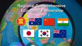 """RCEP là một hiệp định có lợi thế cho khối Asean thâm nhập Ấn Độ, nhưng người Ấn cho rằng RCEP không hấp dẫn vì tư duy """"bảo hộ thị trường""""."""
