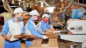 Ngành gỗ thiệt hại 3.000 tỷ đồng vì dịch Covid -19