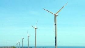 Phát triển điện gió: Nhà đầu tư còn nhiều băn khoăn