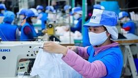 Các biện pháp phòng vệ thương mại đã và đang áp dụng góp phần bảo vệ công ăn việc làm của khoảng 120.000 người lao động. Ảnh: VGP.