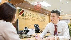 Giao dịch tại Agribank. (Ảnh: CTV/Vietnam+)