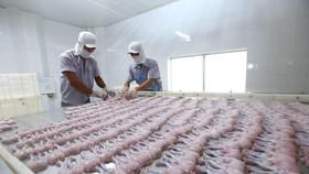Dây chuyền chế biến thịt ếch xuất khẩu sang EU tại Công ty TNHH Tân Thành Lợi, tỉnh Long An. (Ảnh: TTXVN)