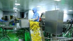 Dây chuyền đóng lọ ớt xuất khẩu tại nhà máy chế biến của Công ty Cổ phần chế biến thực phẩm xuất khẩu GOC. (Ảnh: Vũ Sinh/TTXVN)