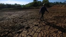 Hồ trữ nước tại xã Hương Đô, huyện Hương Khê, tỉnh Hà Tĩnh, cạn khô nứt nẻ. (Ảnh: Duy Khương/TTXVN)