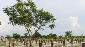Một góc dự án khu dân cư Nhơn Đức, huyện Nhà Bè. Ảnh: AX