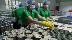 Chiến biến vải thiều tươi xuất khẩu tại Công ty Cổ phần Xuất nhập khẩu Vifoco. (Ảnh: Vũ Sinh/TTXVN)