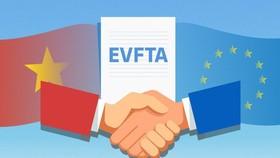 Phê duyệt kế hoạch thực hiện EVFTA