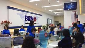 Giao dịch tại BIDV. (Ảnh: PV/Vietnam+)