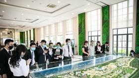 BĐS biển Phan Thiết sôi động theo hạ tầng