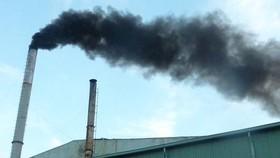 TPHCM: Tăng các loại phí, lệ phí liên quan đến môi trường
