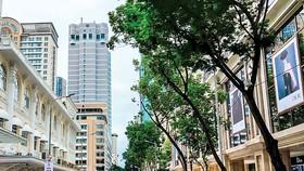 Đường Đồng Khởi TPHCM có giá thị trường hàng tỷ đồng/m2, nhưng khung giá đất chỉ 162 triệu đồng/m2, nếu được phép nhân lên 30% hay áp dụng hệ số K giá đất cũng chỉ 442 triệu đồng/m2.