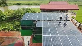 Kiểm tra, bảo dưỡng hệ thống pin năng lượng Mặt Trời. (Ảnh: Thanh Thương/TTXVN)