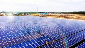 Năng lượng tái tạo: Tính ưu việt và khả năng tái chế cao