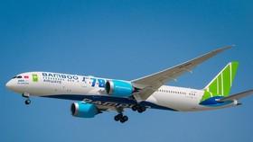 Bamboo Airways đã chịu thiệt hại nặng nề về doanh thu do ảnh hưởng của dịch COVID-19. (Ảnh: CTV/Vietnam+)
