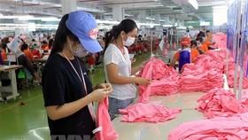 Sản xuất may mặc tại khu công nghiệp Visip. (Ảnh: An Đăng/TTXVN)