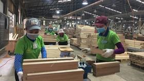 TPHCM hỗ trợ vốn cho doanh nghiệp khởi nghiệp, nhỏ và vừa