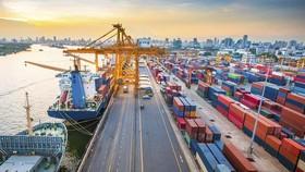 Trình đề án thu phí sử dụng hạ tầng công cộng khu vực cửa khẩu cảng biển