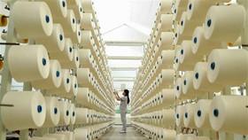 Dây chuyền sợi xuất khẩu tại Công ty TNHH dệt Phú Thọ. (Ảnh: TTXVN)