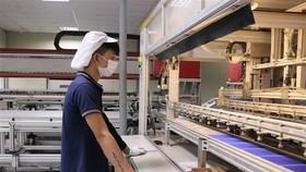 Công nhân làm việc tại Công ty TNHH Green Energy Technology Việt Nam. (Ảnh: Thái Hùng/TTXVN)