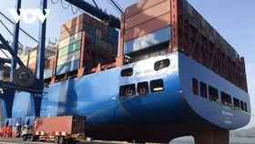 Nhiều DN cho biết, chi phí xuất nhập khẩu hàng hóa gia tăng do hiện tượng tăng giá thuê tàu và container.