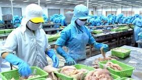 Doanh nghiệp Việt Nam cần chủ động hơn trong thị trường RCEP