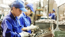 Hà Nội bắt đầu triển khai tổng điều tra kinh tế năm 2021