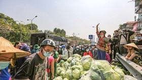 Một điểm giải cứu nông sản tại Hà Nội (Ảnh: Minh Sơn/Vietnam+)