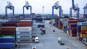Năm 2021, có thêm 8 bến cảng biển tại 5 tỉnh thành