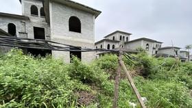 Hàng trăm căn biệt thự, nhà liền kề bỏ hoang phế nhiều năm nay trên địa bàn xã An Khánh, huyện Hoài Đức - Ảnh: QUANG THẾ