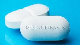 Các thí nghiệm với molnupiravir đang được thực hiện bởi các nhà nghiên cứu tại phòng thí nghiệm Merck.