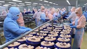 Nhiều doanh nghiệp thủy sản và thực phẩm phản ánh việc áp dụng quy định kiểm dịch của Bộ NN&PTNT dẫn tới việc kiểm tra bị chồng chéo, lãng phí - Ảnh: TẠ HÀ