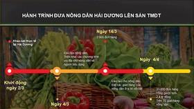 Thương mại điện tử: Bàn đạp nông sản Việt