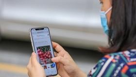 Người tiêu dùng dần có thói quan mua nông sản tươi sạch trên các sàn thương mại điện tử. (Ảnh: Minh Sơn/Vietnam+)
