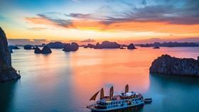 Du lịch Việt thoi thóp chờ 'hồi sức cấp cứu'