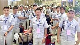 8 doanh nghiệp xuất khẩu lao động bị dừng đưa lao động sang Nhật