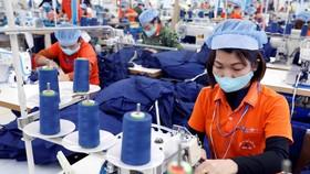 Các doanh nghiệp may đang bị ảnh hưởng rất nhiều vì dịch COVID-19. (Ảnh: Trần Việt/TTXVN)