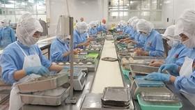 Doanh nghiệp Việt Nam vươn lên đáp ứng các yêu cầu của hội nhập
