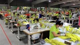 Sản xuất các mặt hàng may mặc tại Nhà máy may Tân Đệ 1, tỉnh Thái Bình. (Ảnh: Thế Duyệt/TTXVN)