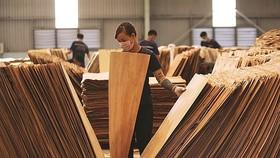 Mỹ gia hạn ban hành kết luận chống lẩn tránh thuế với gỗ dán Việt Nam