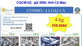 Một combo nông sản của Công ty thủy sản AB Cà Mau - Ảnh: Tổ công tác 970 cung cấp