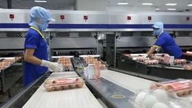 Các doanh nghiệp trông ngóng TP.HCM mở cửa kinh tế