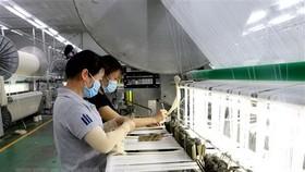 Công nhân tại một doanh nghiệp ở Long An. (Nguồn: TTXVN)