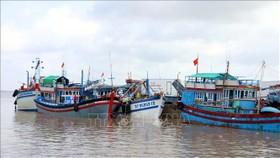Tàu neo đâu tại cảng cá Trần Đề (Sóc Trăng). Ảnh: Tư liệu TTXVN phát