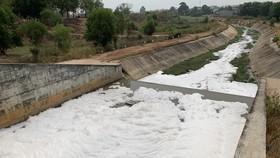 Bọt nổi trắng xóa trên kênh sau mưa lớn