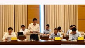 Phó Tổng Thanh tra Chính phủ Trần Ngọc Liêm cho biết phát biểu tại phiên họp
