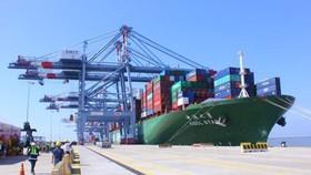 Cảng container quốc tế Cái Mép. Ảnh: QUANG KHOA